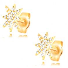 14K Gelbgold Ohrringe - glitzernder Stern mit klaren Zirkonen geschmückt